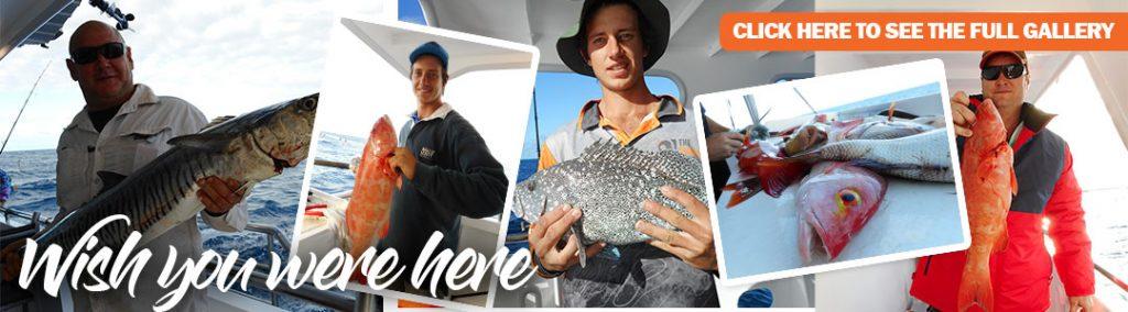 Swain Reefs trip 22 to 29 June 2019 to Great Barrier Reef