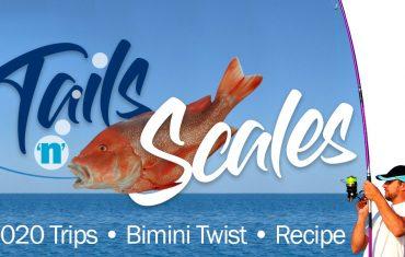 Tails'n'Scales Sep 2019