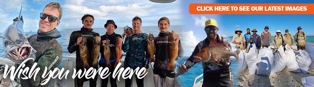 Reef fishing Swain Reefs