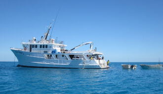 Reef fishing charter to Swain Reefs